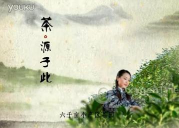 桃花溪生态茶茶叶广告|云雾茶茶叶广告