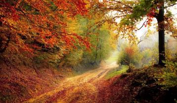秋日的私语|理查德.克莱德曼