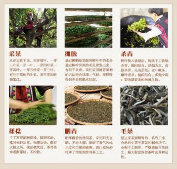 普洱茶制作工艺图解|普洱茶生茶的加工工艺