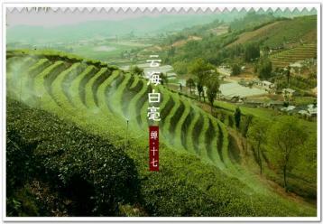 7万茶企仅11家上市或挂牌|茶叶新闻