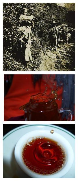 三国时期的普洱茶