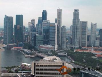 普洱茶在新加坡的历史 普及与发展