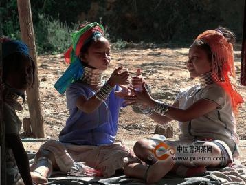 历史:金三角寻茶记(六)